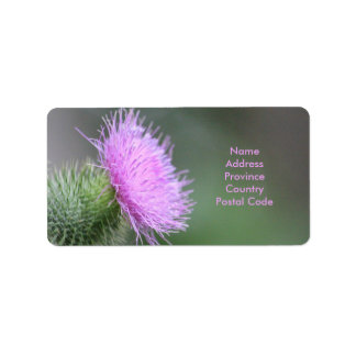 Scotch Thistle Label