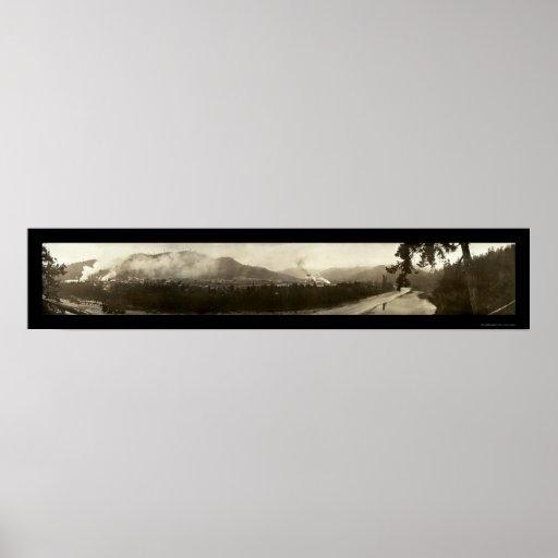 Scotia CA que explota los árboles la foto 1912 Póster
