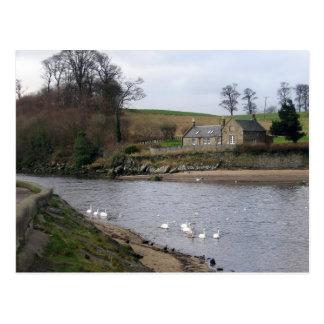 Scotland Countryside Postcard