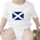 SCOTLAND FLAG CREEPER