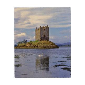 Scotland, Highland, Wester Ross, Loch Linnhe. A Wood Wall Art