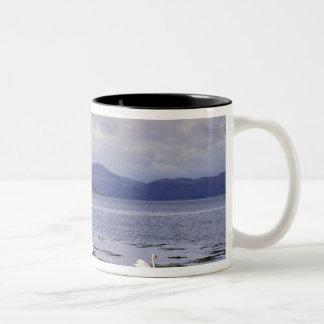 Scotland, Highland, Wester Ross, Stalker Two-Tone Coffee Mug