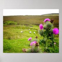 Scotland Highlands Thistle Landscape Poster