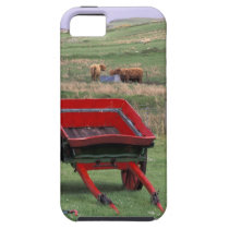 Scotland, Isle of Skye, Kilmuir. Farm animals iPhone SE/5/5s Case