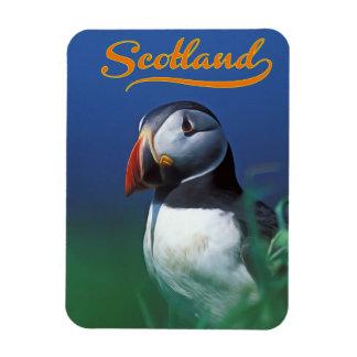 Scotland Rectangular Photo Magnet