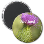 Scotland Thistle 2 Inch Round Magnet
