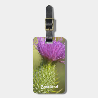 Scotland Thistle Tags For Luggage