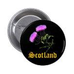 Scotland, thistle pinback buttons