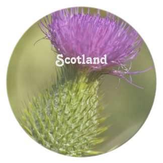 Scotland Thistle Party Plate
