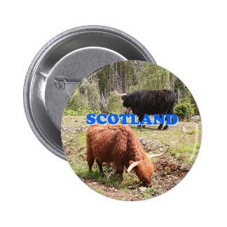 Scotland: two highland cattle 2 inch round button
