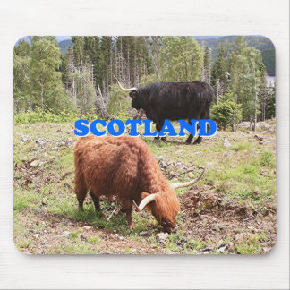 Scotland: two highland cattle mouse pad