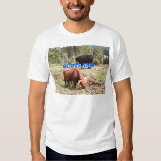 Scotland: two highland cattle shirt