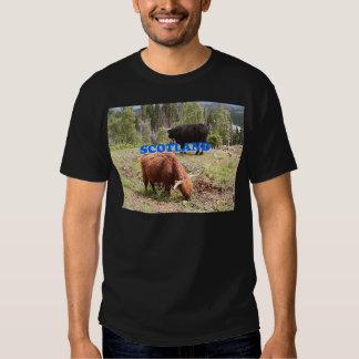 Scotland: two highland cattle t-shirt
