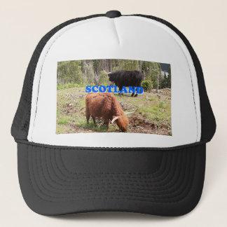 Scotland: two highland cattle trucker hat
