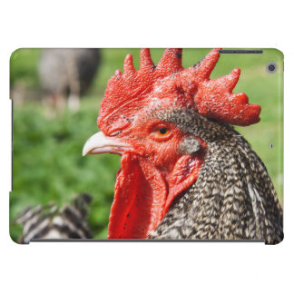 Scots Grey Rooster Photograph iPad Air Cover