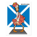 ¿Scotsman verdadero? Postal