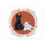 Scottie Adult & Westie Puppy Postcard