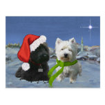 Scottie and Westie Christmas Star Postcard