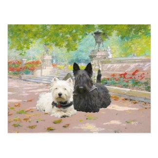 Scottie and Westie in a Garden Postcard
