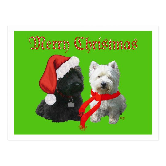 Scottie and Westie Merry Christmas Postcard