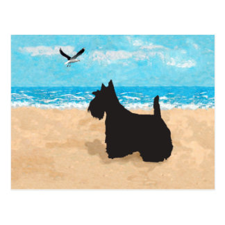 Scottie at the Beach with Seagull Post Cards