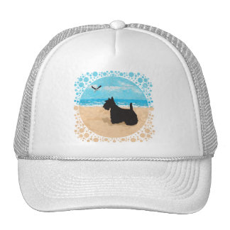 Scottie at the Beach with Seagull Trucker Hat