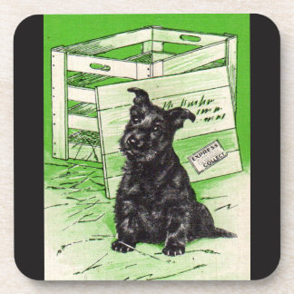 Scottie dog by special delivery coaster