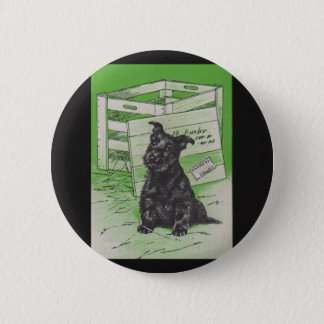 Scottie dog by special delivery pinback button