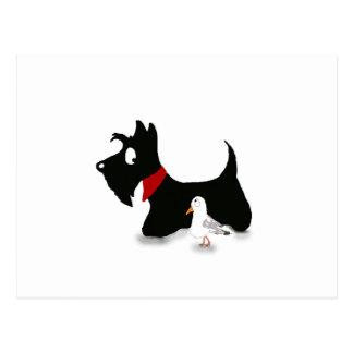Scottie Dog & Gull Postcard