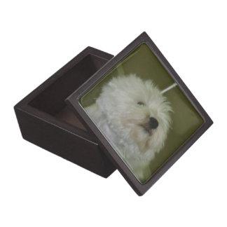 Scottie Dog Premium Gift Box