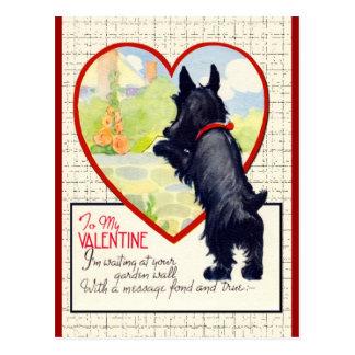 Scottie dog Valentine Scottish Terrier Postcard