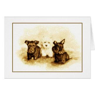 Scotties and Westie trio Card