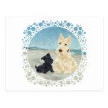 Scotties at the Beach, Wheaten & Black Pup Postcard