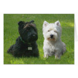 Scottish and West Highland Terriers Greenwood Cards
