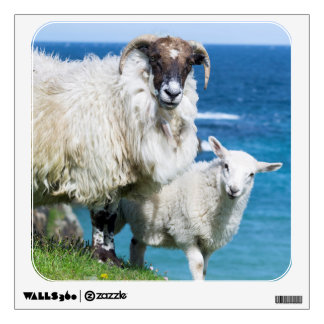 Scottish Blackface on the Isle of Harris Wall Decal