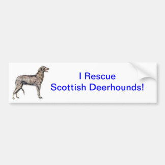 Scottish Deerhound Bumper Stickers
