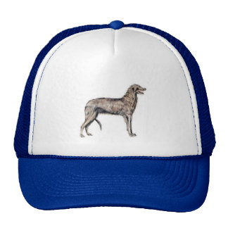 Scottish Deerhound Hats