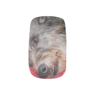 Scottish Deerhound Minx® Nail Art