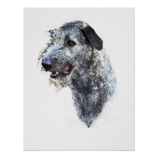 Scottish Deerhound Poster