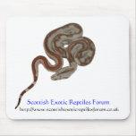 Scottish Exotic Reptiles Forum MouseMat