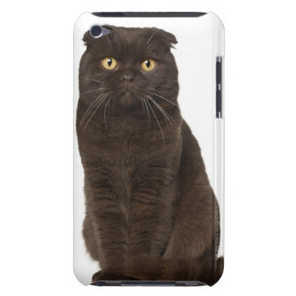 Scottish Fold (18 months old) sitting Barely There iPod Cover