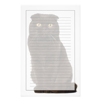 Scottish Fold (18 months old) sitting Stationery