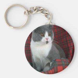 Scottish Fold blue and white bi-color Keychain