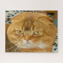 Scottish Fold Cat Pedigree. Jigsaw Puzzle