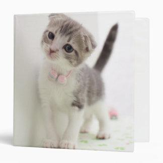 Scottish Fold Kitten Binder
