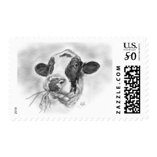 Scottish Friesian Holstein Cow Postage
