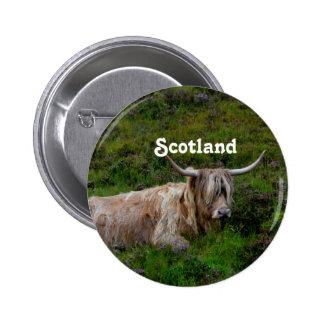 Scottish Highland Cattle 2 Inch Round Button