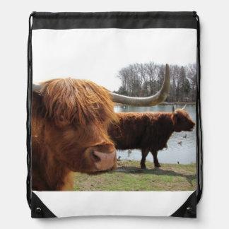 Scottish Highland Cattle ~ Backpack