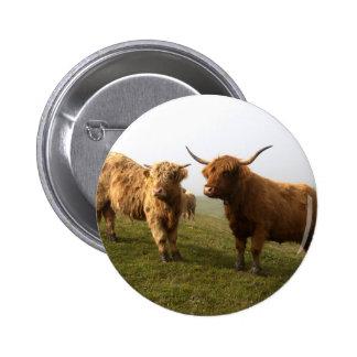 Scottish Highland Cattle - Greener Pastures! 2 Inch Round Button