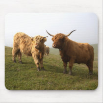 Scottish Highland Cattle - Greener Pastures! Mouse Pad